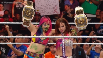 The WWE Women's Tag Team Championship Changed Hands At Hell In A Cell