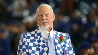 Canadian Hockey Broadcaster Don Cherry Was Fired After A Rant About Immigrants