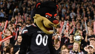 The Cincinnati Bearcat Trucked Five Kids For A Touchdown In A Mascot Vs. Kids Game