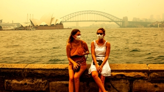 The Australian Bush Fires: What Caused Them, And How Can You Help?