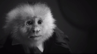 David Lynch Surprise Dropped A Short Film On Netflix In Which He Interrogates A Monkey