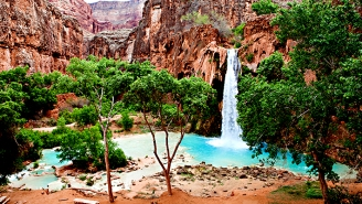 Havasu Falls Is Asking For Help Tackling Coronavirus From The Instagram Influencers Who Made It Famous