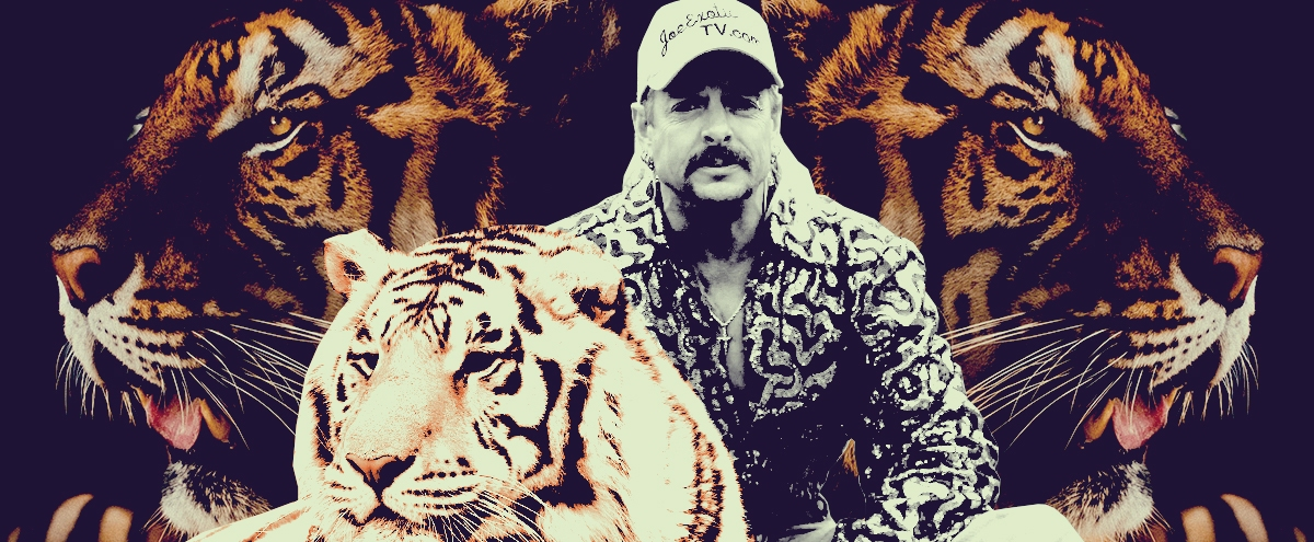 'Tiger King' Ignores Its Only True Protagonists — The Actual Tigers