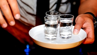 We Asked Bartenders To Name The Vodkas You Can Actually Drink Straight