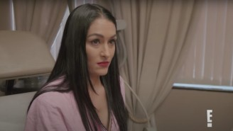 Total Bellas Total Recap: The Birdies And The Bees