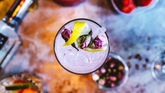 We Had Bartenders Name The Best Gins For Your Summer Gin & Tonic