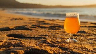 The Best Hazy Beers To Drink This Summer, According To Bartenders
