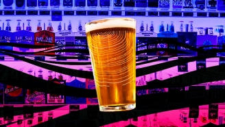 Bartenders Name The Most Underrated IPAs On The Market