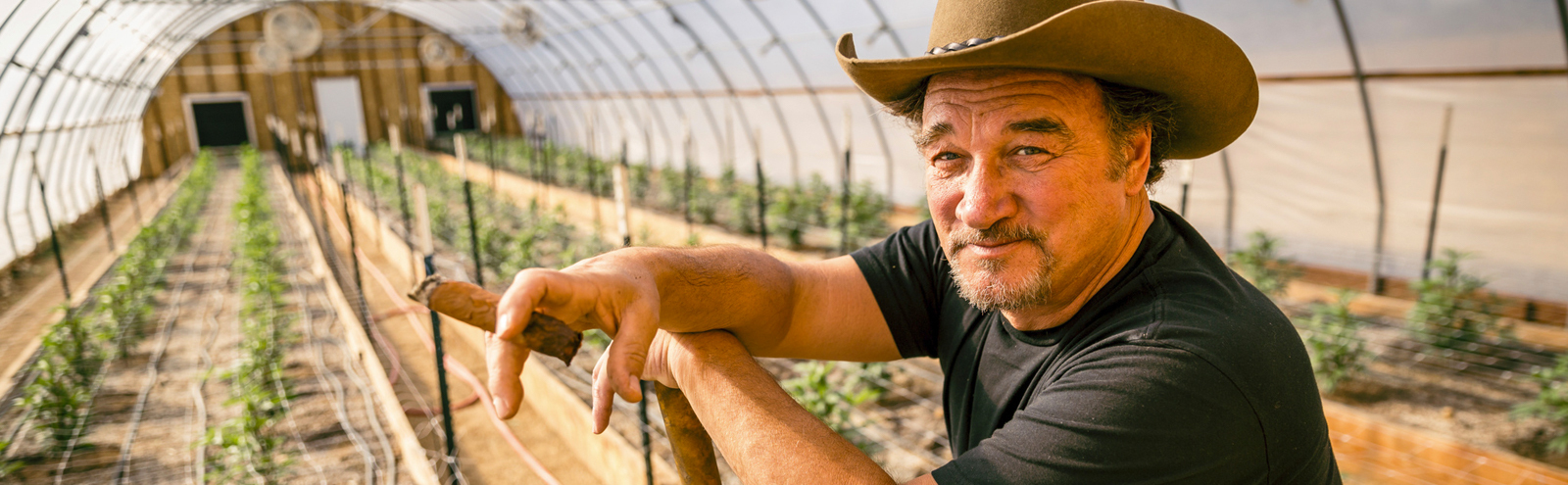 Jim Belushi On His Cannabis Show 'Growing Belushi,' His Favorite Strains, And The 'Smell Of SNL'
