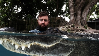 Adventurer Forrest Galante On His Shark Week Show And Conservation During COVID