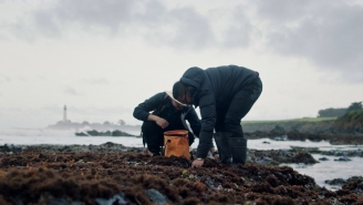 Foraging For Sushi Ingredients On A Beach Is An Unforgettable Adventure In Sustainable Dining