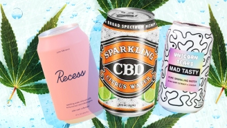 Our Favorite Sparkling CBD Seltzer Waters Of 2020
