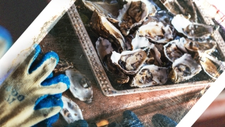 Are Oysters-By-Mail The Next At-Home Dining Thing?