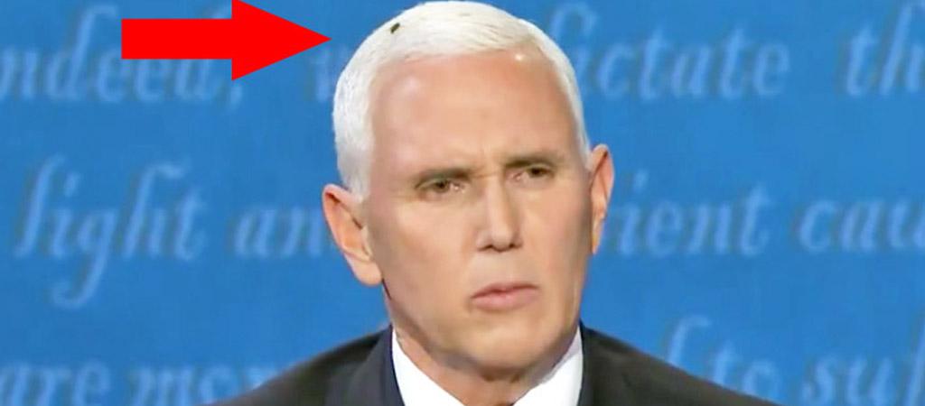 Now Joe Biden Is Trolling Mike Pence And His Debate ...
