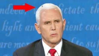 A Massive Fly Camped Out On Mike Pence's (Very White) Head During The VP Debate, And It's Already Iconic
