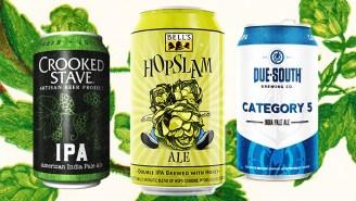 Bartenders Name The Best IPAs For Hop-Obsessed Beer Drinkers