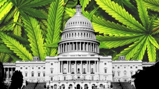 The House Of Representatives Has Voted To Decriminalize Weed In America — Here's What Happens Next