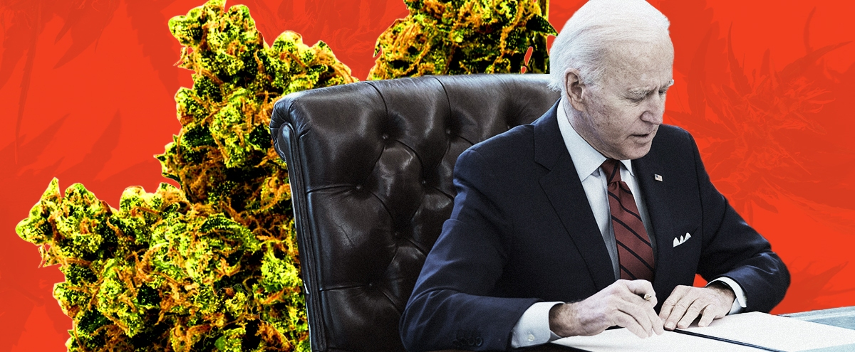 What Are The Chances That Marijuana Will Be Legalized Now That Biden Is In Office?