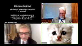 When Zoom Filters Go Wrong: A Lawyer Has To Inform A Judge That He's Not Really A Cat