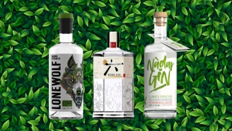 We're Living In The Gin Boom — Here Are Our Favorite New(ish) Brands