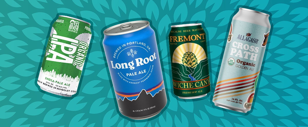 Organic Beer Is Having A Moment — Here Are The Brews You Should Try