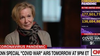 Deborah Birx Admitted Hundreds Of Thousands Of Coronavirus Deaths Could Have 'Been Mitigated' And Drew A Strong Reaction Online