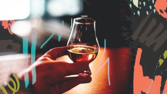 The Pros And Cons Of Every Type Of Whiskey Tasting Glass