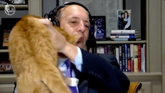 Jeff Van Gundy Had To Toss His Cat Off Of Him While Calling Clippers-Mavs
