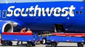Some Airlines Are Extending Alcohol Bans On Flights After Violent Passenger Incidents Went Viral