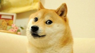 The Doge Meme NFT Broke Records Selling For About $4 Million In Crypto