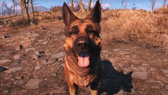 'Fallout 4' Fans Mourned The Death Of The Real Dog That Inspired Dogmeat's Design