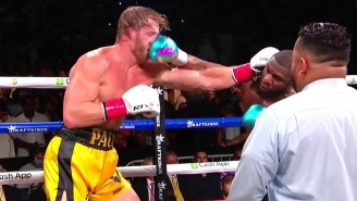 Logan Paul Landed Just 28 Punches But Managed To Make It All Eight Rounds With Floyd Mayweather