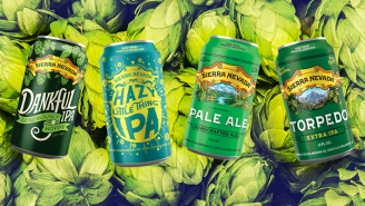 We Tasted And Ranked Every Sierra Nevada IPA So You Don't Have To