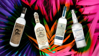 Bartenders Shout Out Their Favorite Agave-Forward Tequilas For The Heat Of Summer