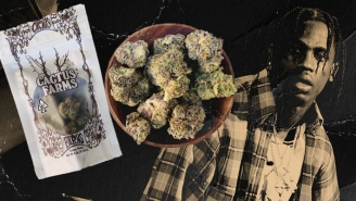 We Sampled Travis Scott's Cactus Farms Cannabis — Here's Our Review