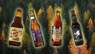 Beers That Taste Like Fall In A Bottle, According To Bartenders