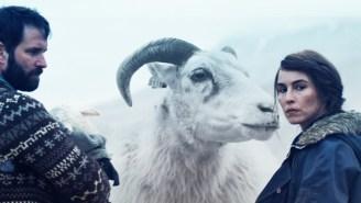 'Lamb' Director Valdimar Jóhannsson And Star Noomi Rapace Describe The Logistics Of Filming Live Lamb Births